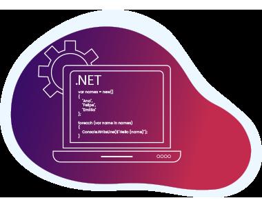 .NET Customization Development