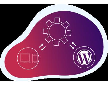 APIs Integration in WordPress